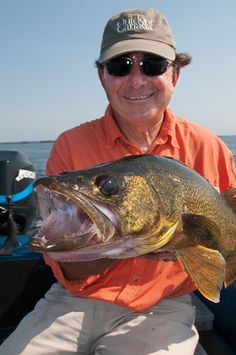 Vertically pulling walleye swimbaits isn't a season-specific technique.