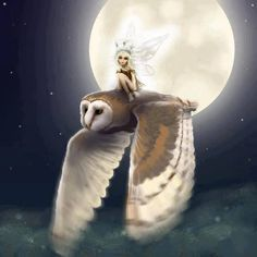 Faerie and Owl