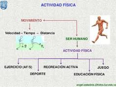 Resultado de imagen para Promoción de valores mediante las actividades físicas.