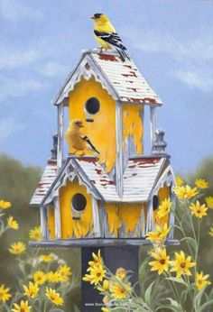 finches and a yellow bird house
