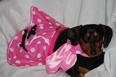 The Pink Doxie Skirt comes in 5 sizes by DownUnderDogDesigns, $55.00
