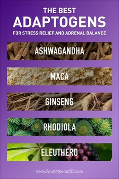 The 5 Best Adaptogens to Combat Stress and Adrenal Fatigue - Amy Myers MD Adrenal Fatigue Symptoms, Anxiety Disorder Symptoms, Adrenal Glands, Chronischer Stress, Chronic Stress, Stress Relief, Herbal Remedies, Natural Remedies, Adrenal Health