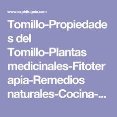 Tomillo-Propiedades del Tomillo-Plantas medicinales-Fitoterapia-Remedios naturales-Cocina-Digestivo