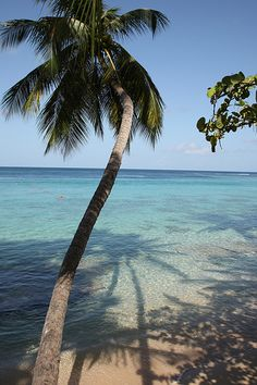 Barbados, Settlers Beach- honeymoon, I want o go back now!!!