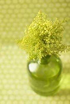 Chartreuse vase.