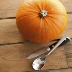 Preserve your pumpkins for longer with these smart tips. Halloween Crafts, Holiday Crafts, Holiday Ideas, Holiday Decorating, Decorating Your Home, A Pumpkin, Southern Living, Preserves, Thanksgiving