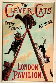 The Clever Cats This quirky Victorian poster features the Clever Cats, who performed in an 1888 show at London Pavilion, Piccadilly. This was part of a show of Victorian entertainment and everyday life, collected by the stage magician and...