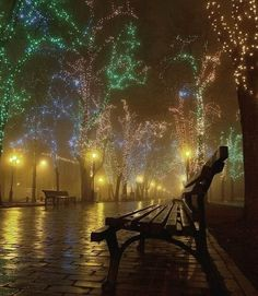 I love how this picture is tranquil, yet merry... a little sad yet joyful and hopeful... beautiful <3