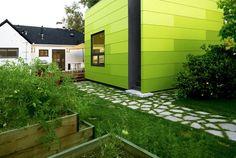 dalles aléée de jardin à joints plantés et maison-conteneur dégradé vert