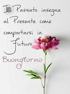Buongiorno a te con fiori – BuongiornoATe.it Italian Memes, Italian Quotes, Good Day, Good Morning, Thank You Friend, Day For Night, Good Mood, Twitter Sign Up, Best Quotes