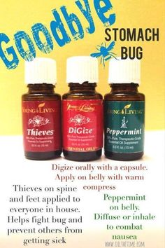 Young Living- Stomach Bug - this worked for us the first part of January.  One afternoon of yucky tummy and we were up and running the next day.