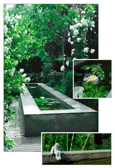Bernadette den Bieman Garden design Source by Garden Pond Design, Modern Garden Design, Landscape Design, Back Gardens, Small Gardens, Outdoor Gardens, Modern Pond, Water Features In The Garden, Ponds Backyard