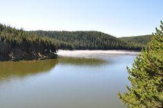 JD's Scenic Southwestern Travel Destination Blog: Bighorn National Forest ~ Rt 14 to Dayton, Wyoming!