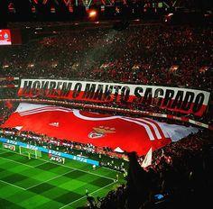 Benfica Wallpaper, Sports Clubs, Best Player, Football Fans, Belle Photo, Portugal, Soccer, World, Design Art