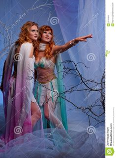 Two Elf Women In Magical Forest - Download From Over 28 Million High Quality Stock Photos, Images, Vectors. Sign up for FREE today. Image: 25165802