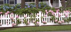 hek voortuin | Hortensia voortuin voorbeeld met roze en blauwe bloemen en een…