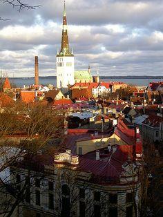 Talinn, Estonia  I love it here