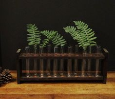 Vintage Test Tube Rack with 11 Test Tubes / by TheFeatheredPen