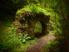Overgrown with moss and such green plants but the Portal shines through.