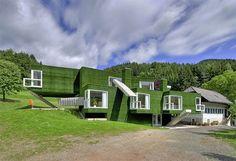 Weird House Wednesday! Can you caption this Green Facade home in Austria?