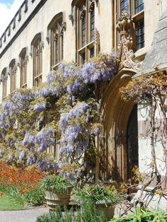 Balliol College, Oxford … Cornwall England, Yorkshire England, Yorkshire Dales, Oxford England, London England, Skye Scotland, Highlands Scotland, Cambridge, Balliol College