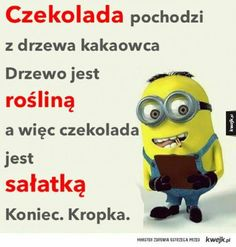 Cala prawda o czekoladzie. Wtf Funny, Hilarious, Weekend Humor, Funny Mems, Just Smile, Motto, Minions, Positive Quotes, Haha