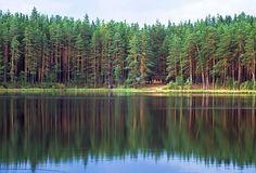 :: Nohipalu Valgjärv lake. Southern Estonia - © Arne Ader / Loodusemees