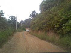 Begini Kondisi Jalan di 5 Desa Pasca Konflik Kampar - Rohul; Saat Kemarau Berdebu, Hujan Bagai Bubur