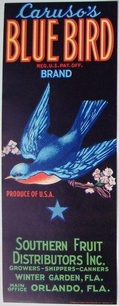 3.25X8.5 BLUE BIRD Vintage Winter Garden Florida Citrus Crate Label