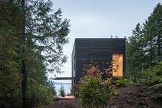 m|w works nestles black cedar cabin within a washington state forest