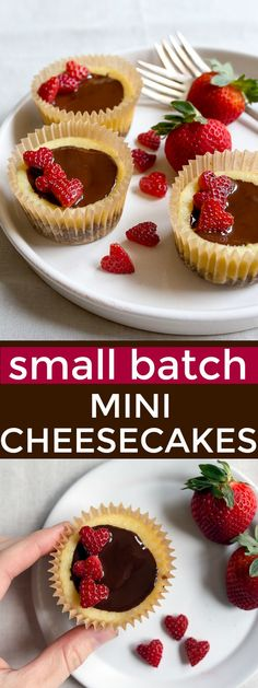 Wonderful Diabetes Recipes Southern Ideas Small batch mini cheesecakes for two. Cheesecake cupcakes as dessert for two.Small batch mini cheesecakes for two. Cheesecake cupcakes as dessert for two. Mini Cheesecake Cupcakes, Mini Cheesecake Recipes, Mini Cheesecakes, Cookie Recipes, Small Desserts, Köstliche Desserts, Delicious Desserts, Dessert Recipes, Small Batch Cupcakes