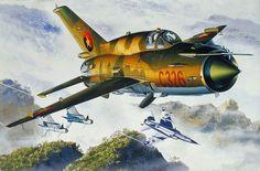 MiG-21bis Angolan Air Force vs Dassault Mirage F.1CZ South African Air Force, Angolan War, 1981 (Masao Satake)