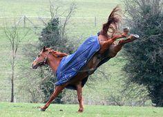 Flying Kick