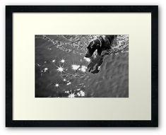 #photography #photo #art #print #artprint #streetphotography #streetphoto #bw #blackandwhite #street #frame #framedprint #findyourthing #photographs #artforsale #wallart #prague #czechia #czechrepublic #city #urban #dogs #dog #pet #animals #doggie #swim #water #river #summer #sunny #day