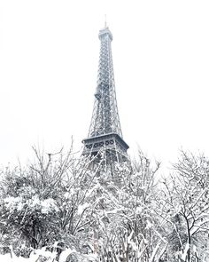 Another snowy day in Paris ❄️