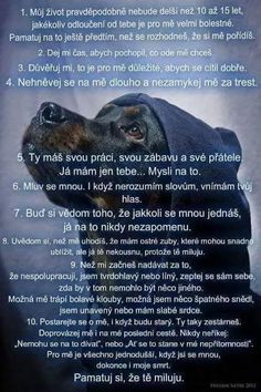 English Words, Dog Quotes, I Love Dogs, Motto, Animals And Pets, The Dreamers, Quotations, Motivational Quotes, Sad
