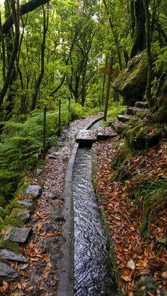 Beautiful Nature Scenes, Beautiful Nature Pictures, Amazing Nature, Beautiful Landscapes, Beautiful Gardens, It's Amazing, Amazing Things, Amazing Places, Wonderful Places