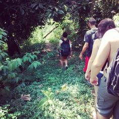 @pandinha_mica_Instagram_Reprodução TRAVESSIA PAU DA FOMEJACAREPAGUÁ Jhttp://vejario.abril.com.br/materia/cidade/dez-sugestoes-de-trilhas-de-nivel-facil-e-medio-no-rio