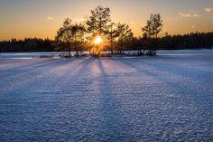 Frozen island - Tyresta National Park, Stockholm, Sweden.