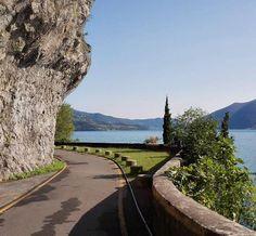 La pista ciclabile #VelloToline è una bella risorsa del #lagodiseo per una passeggiata o una pedalata in ogni stagione. Tutti i dettagli della pista ciclopedonale li trovi qui: http://ift.tt/2j6s7wb Foto: @parcofranciacorta #visitlakeiseo #inlombardia #italiait http://ift.tt/2iX174Z - http://ift.tt/1HQJd81