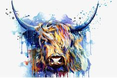 want to find out where this image came from? Anyone know who it is by or where I can legitimately order a print of it? Highland Cow Painting, Highland Cow Art, Highland Cow Canvas, Highland Cow Tattoo, Cow Colour, Bull Painting, Scottish Highland Cow, Bull Tattoos, Cow Pictures