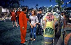 """Peter Sellers and Claudine Longet with the painted elephant. A scene from the film """"Hollywood Party"""" (The Party) by Blake Edwards, 1968 - Carefully selected by GORGONIA www. Blake Edwards, Actors Funny, Hollywood Party, Indian Elephant, Streaming Movies, Man Humor, Film Movie, Movies Online, Good Movies"""