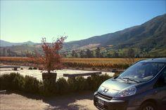 Valle de Colchagua, Chile (Viña Montes) Colchagua Valley, Chile (Montes Vineyards)