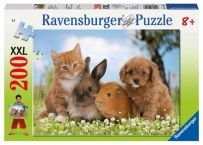 Cavapoo (Cavalier King Charles Spaniel X Poodle) Puppy with Rabbit, Guinea Pig and Ginger Kitten Valokuvavedos tekijänä Mark Taylor AllPosters. Cute Baby Animals, Animals And Pets, Funny Animals, Tier Wallpaper, Animal Wallpaper, Cute Animal Videos, Cute Animal Pictures, Netherland Dwarf Bunny, Ginger Kitten