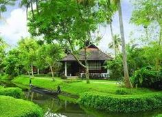 Image result for beauty of kerala