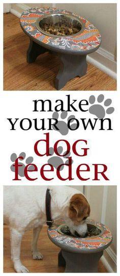 Awesome dog feeder