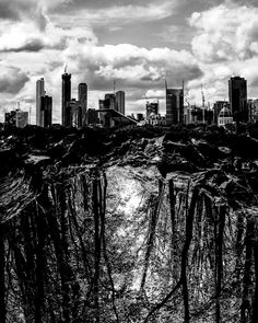Melbourne roots