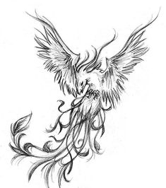 Phoenix Tattoo Design For Everybody