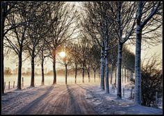 Asselt, Limburg, the Netherlands