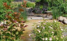 Residential Landscape Design - So green and relaxing! Landscape Elements, Green Landscape, Landscape Architecture, Landscape Design, Pacific Northwest, Sustainability, Plants, Landscape Designs, Planters